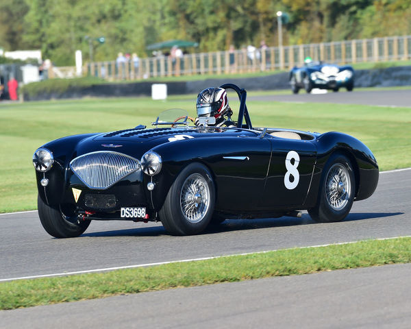 Michael Lyons, Austin Healey-Corvette BN1, Freddie March Memorial Trophy, sports cars, 1952 to 1955, Goodwood Revival 2019, September 2019, automobiles, cars, circuit racing, Classic, competition, England, entertainment, event