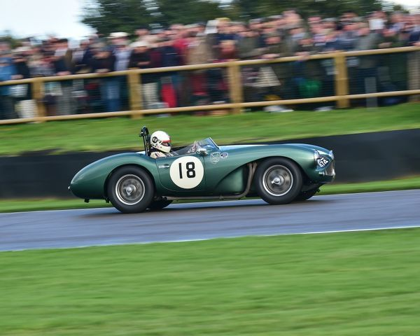 Steve Boultbee-Brooks, Aston Martin DB3S, Freddie March Memorial Trophy, Sports Racing Cars, Goodwood Revival 2017, September 2017, automobiles, cars, circuit racing, Classic, competition, England, entertainment, event, Goodwood, Goodwood Revival 2017