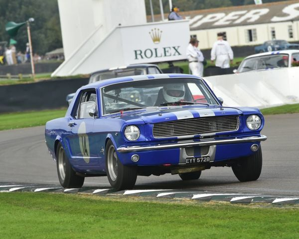 Richard Squire, Michael Squire, Ford Mustang, EYY 572 B, Shelby Cup, Goodwood Revival 2014, 2014, automobile, Autosport, Goodwood Revival, Goodwood Revival 2014, Goodwood Revival 2014 Friday, Goodwood Revival 2014 Saturday, motor racing, motor sport