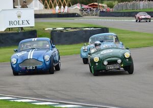 Anthony Hansford - AC Ace and Franc Hofermann-Kiefer - Aston Martin DB2/4 MkIII,