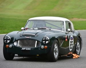 CM13 6993 Mark Dunn, Austin Healey 3000 MkII