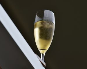 CM14 5767 a glass of fizz