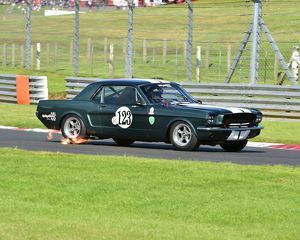<b>HSCC Legends of Brands Hatch Super Prix, July 2016</b><br>Selection of 108 items
