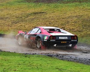 motorsport 2018/mgj winter rally stages brands hatch january/cm22 1662 neil mcmahon daniel bashier ferrari