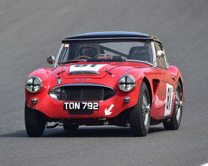 motorsport 2019/masters historic festival brands hatch 2019/cm28 0543 oug muirhead austin healey 100 6