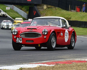 motorsport 2019/masters historic festival brands hatch 2019/cm28 1651 mark holme austin healey 3000 mkii