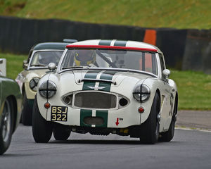 motorsport 2019/masters historic festival brands hatch 2019/cm28 1692 richard hywel evans austin healey mk1