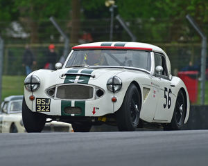 motorsport 2019/masters historic festival brands hatch 2019/cm28 1757 richard hywel evans austin healey mk1