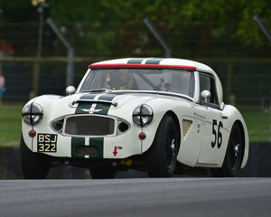 motorsport 2019/masters historic festival brands hatch 2019/cm28 1791 richard hywel evans austin healey mk1