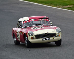 motorsport 2019/masters historic festival brands hatch 2019/cm28 1857 simon milner ross milner mgb